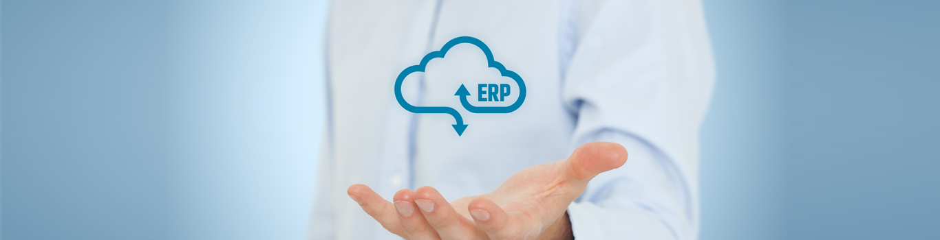 ERP Software Company Dubai